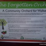 the-forgotten-orchard-wallsend -park - 150x150