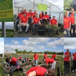 McDonalds Volunteers Working On The Farm In Wallsend                    (click pic for larger view)
